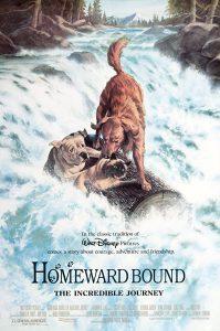 ดูหนัง Homeward Bound: The Incredible Journey (1993) สองหมาหนึ่งแมว ใครจะพรากเราไม่ได้