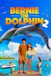 ดูหนัง Bernie the Dolphin 2 (2019) เบอร์นี่ โลมาน้อยหัวใจมหาสมุทร 2