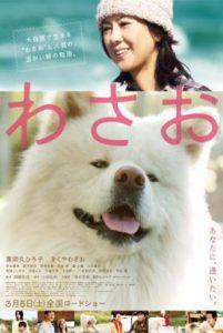 ดูหนัง Wasao (2011) วาซาโอะ [ซับไทย]